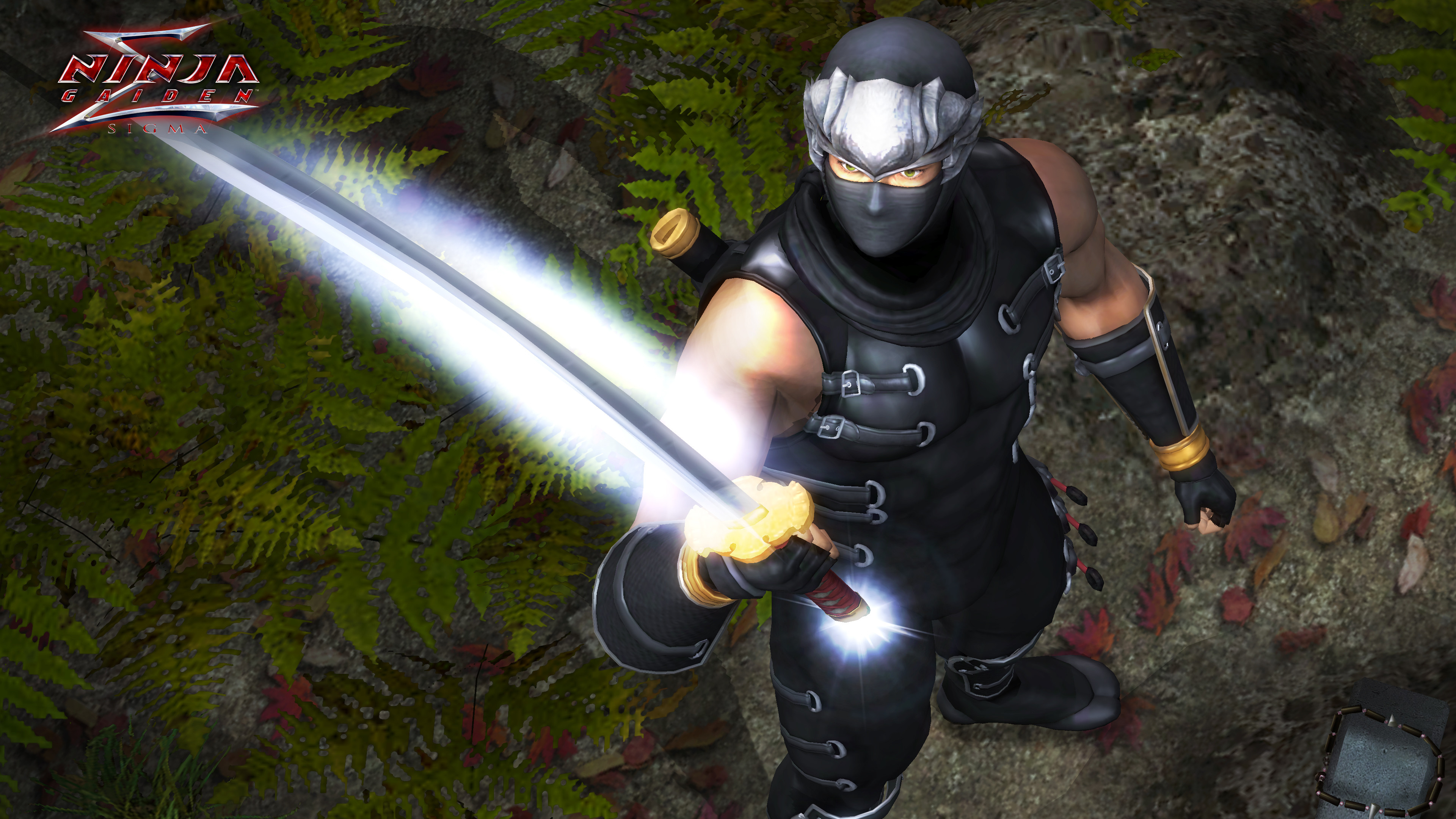Another screenshot of Ninja Gaiden Sigma 1