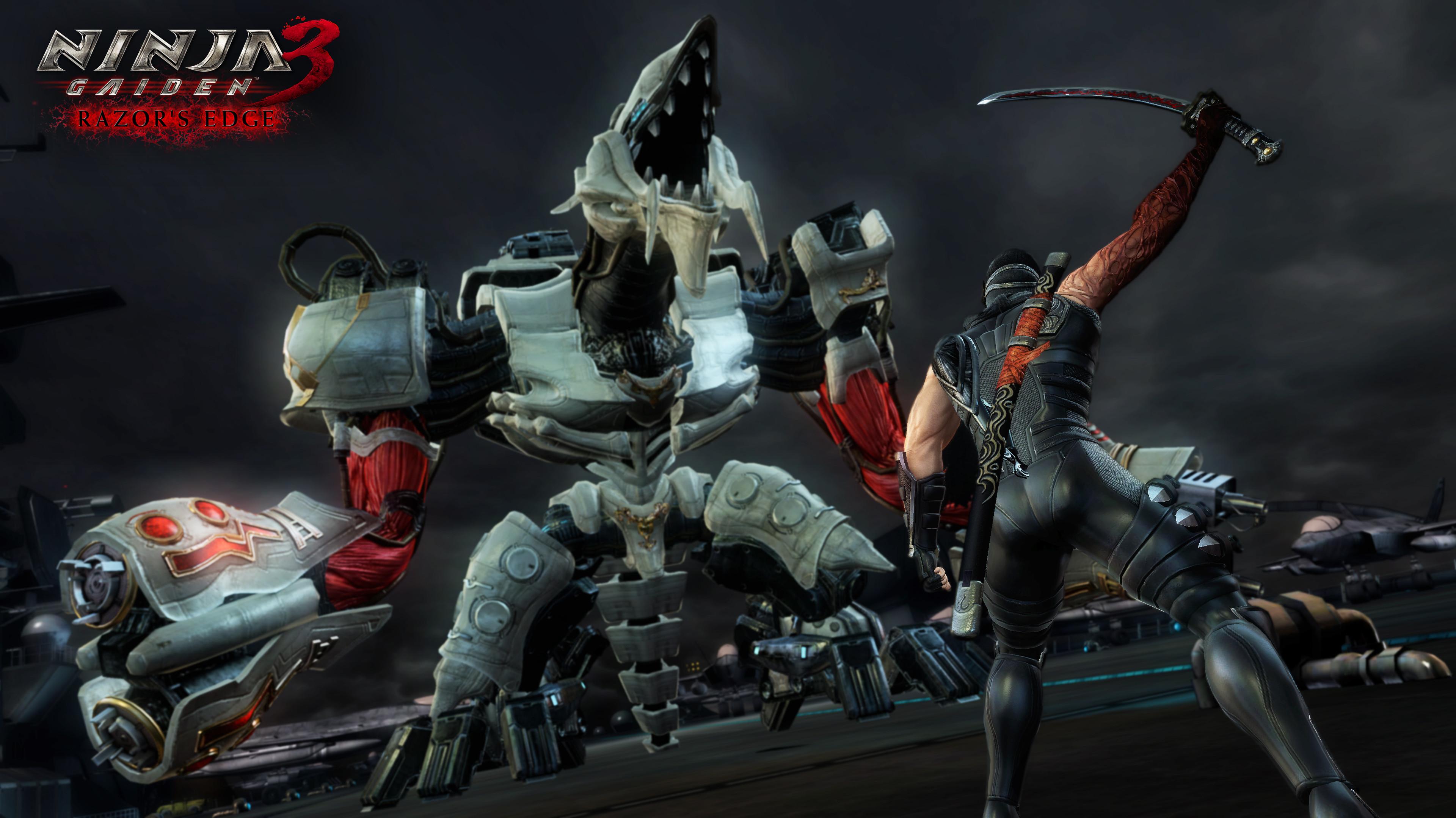 Ninja Gaiden 3 Sigma Screenshot