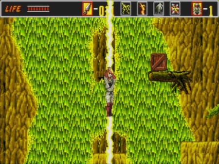 скриншот Revenge of the Shinobi 4