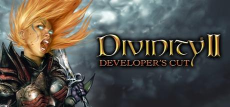 Divinity II: Developer's Cut Cover Image