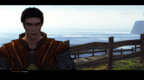 Скриншот №9 к SpellForce 2 - Faith in Destiny Scenario 1 Flinks Secret Diary