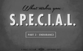 Fallout 4 Endurance Video