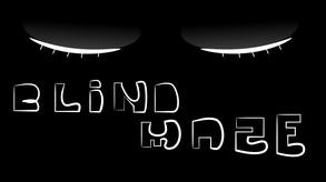 BlindMaze video