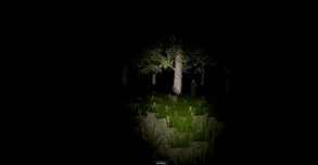 Alone In The Forest VR video