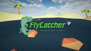 FlyCatcher video