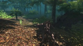 Forest monster video