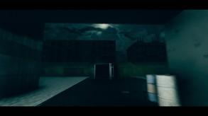 Z Arena video