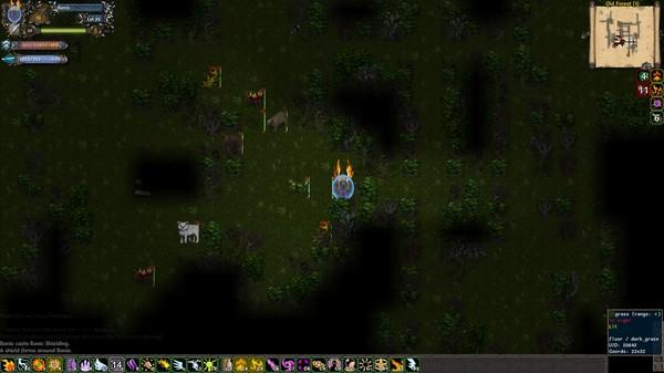 скриншот Tales of Maj'Eyal 4