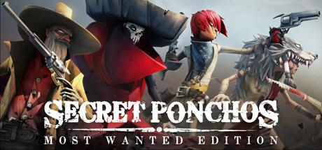Secret Ponchos Cover Image