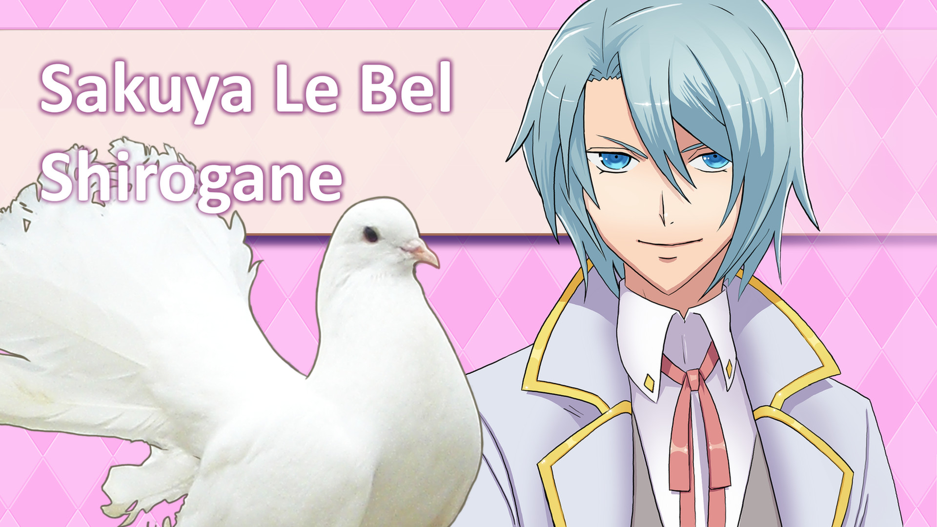 pigeon dating vn