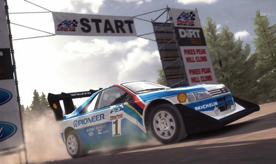 скриншот DiRT Rally 2