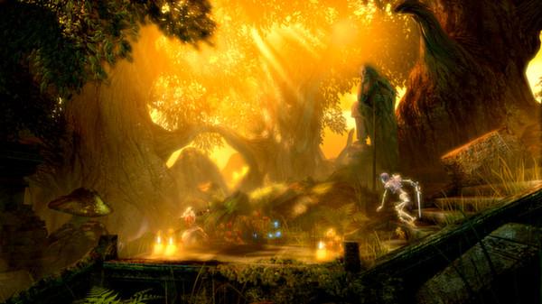 Скриншот №1 к Trine Enchanted Edition
