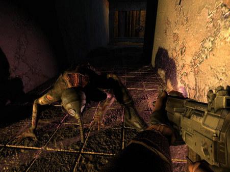Скриншот №5 к S.T.A.L.K.E.R. Shadow of Chernobyl