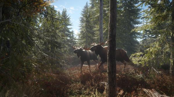 Скриншот №24 к theHunter Call of the Wild™