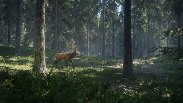 Скриншот №16 к theHunter Call of the Wild™