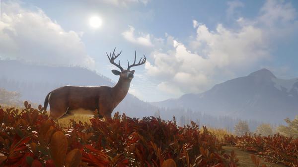 Скриншот №8 к theHunter Call of the Wild™