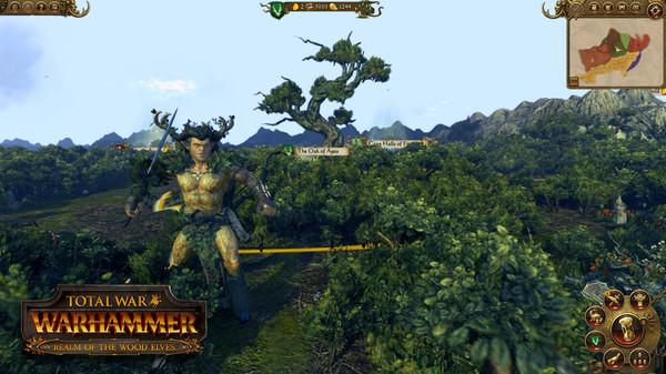 Скриншот №4 к Total War WARHAMMER - Realm of The Wood Elves
