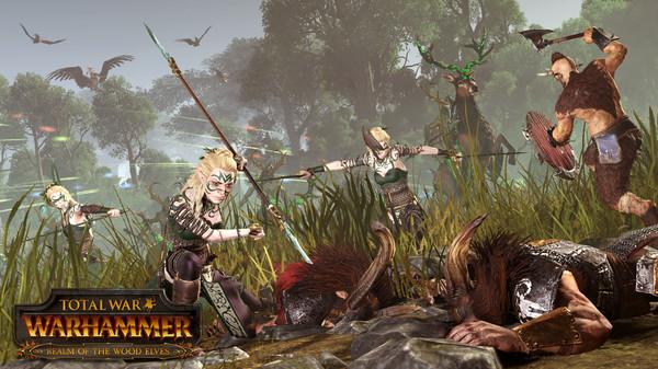 Скриншот №1 к Total War WARHAMMER - Realm of The Wood Elves