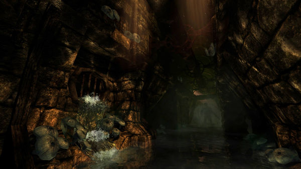 скриншот Amnesia: The Dark Descent 4