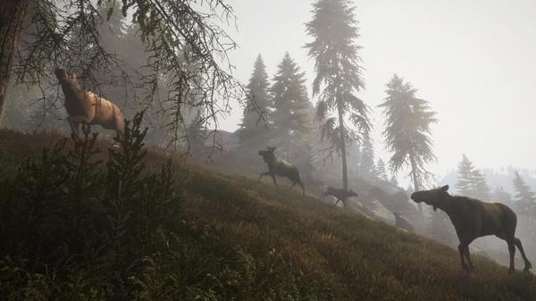 Скриншот №3 к theHunter Call of the Wild™ - Facing the Wild 1