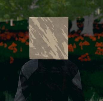 Скриншот №3 к Hide and Seek - Box Head