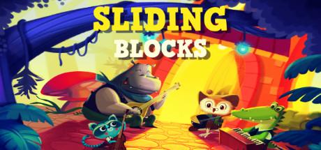 Sliding Blocks Cover Image