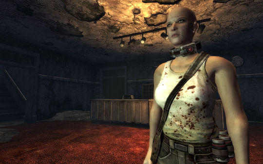 Скриншот №5 к Fallout New Vegas Dead Money