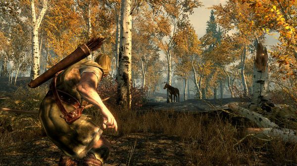 Скриншот №5 к The Elder Scrolls V Skyrim