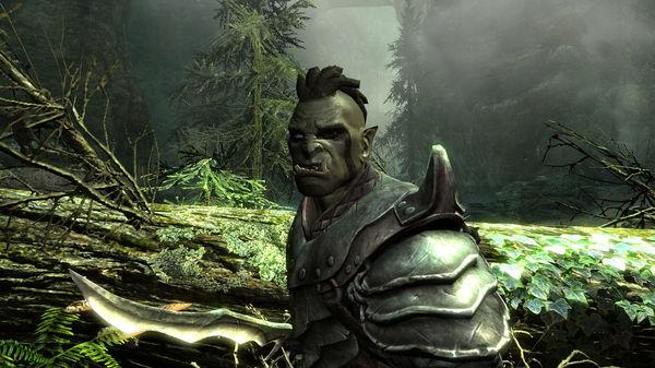 Скриншот №12 к The Elder Scrolls V Skyrim