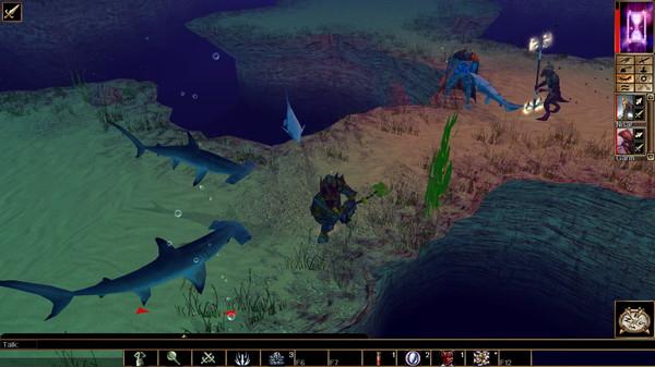 Скриншот №3 к Neverwinter Nights Pirates of the Sword Coast