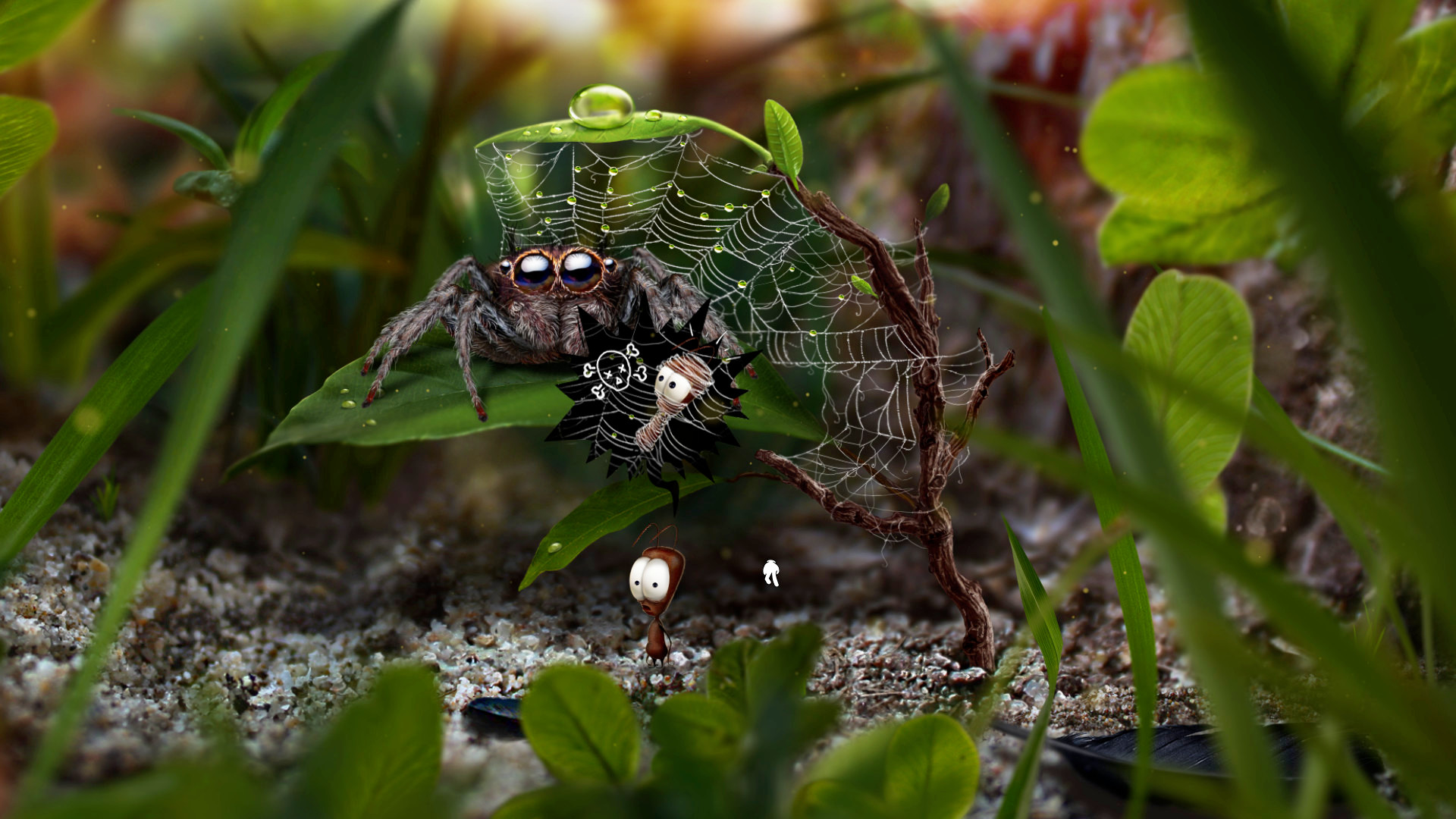 ant_spider