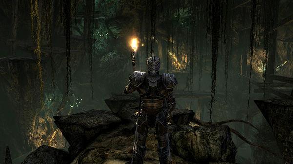 Скриншот №4 к Two Worlds II HD