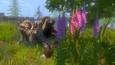 Hive Quest