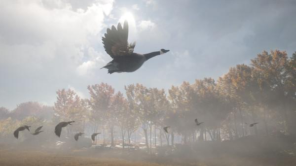 Скриншот №7 к theHunter Call of the Wild™ - Wild Goose Chase Gear