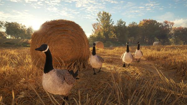Скриншот №9 к theHunter Call of the Wild™ - Wild Goose Chase Gear