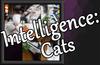 Intelligence: Cats - OST (DLC)